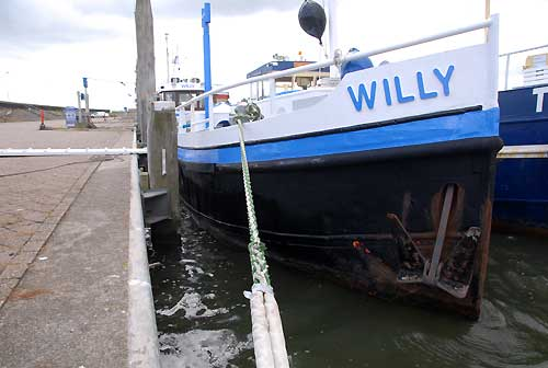 willy 3 sm